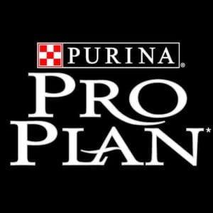 Pro Plan (perros)